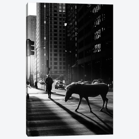 Origin Canvas Print #ENP21} by en.ps Canvas Artwork