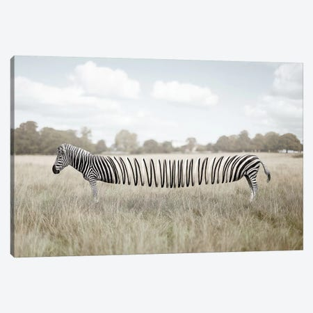 Slinky Fella Canvas Print #ENP25} by en.ps Art Print