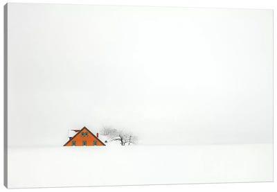 Snowbound  Canvas Art Print