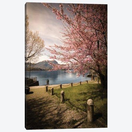 Sakura On Lake Como Canvas Print #ENZ109} by Enzo Romano Canvas Art Print