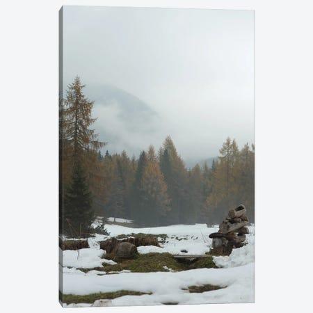 Autumn Or Winter Canvas Print #ENZ149} by Enzo Romano Canvas Art Print