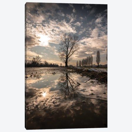 Reflections Canvas Print #ENZ183} by Enzo Romano Canvas Art Print
