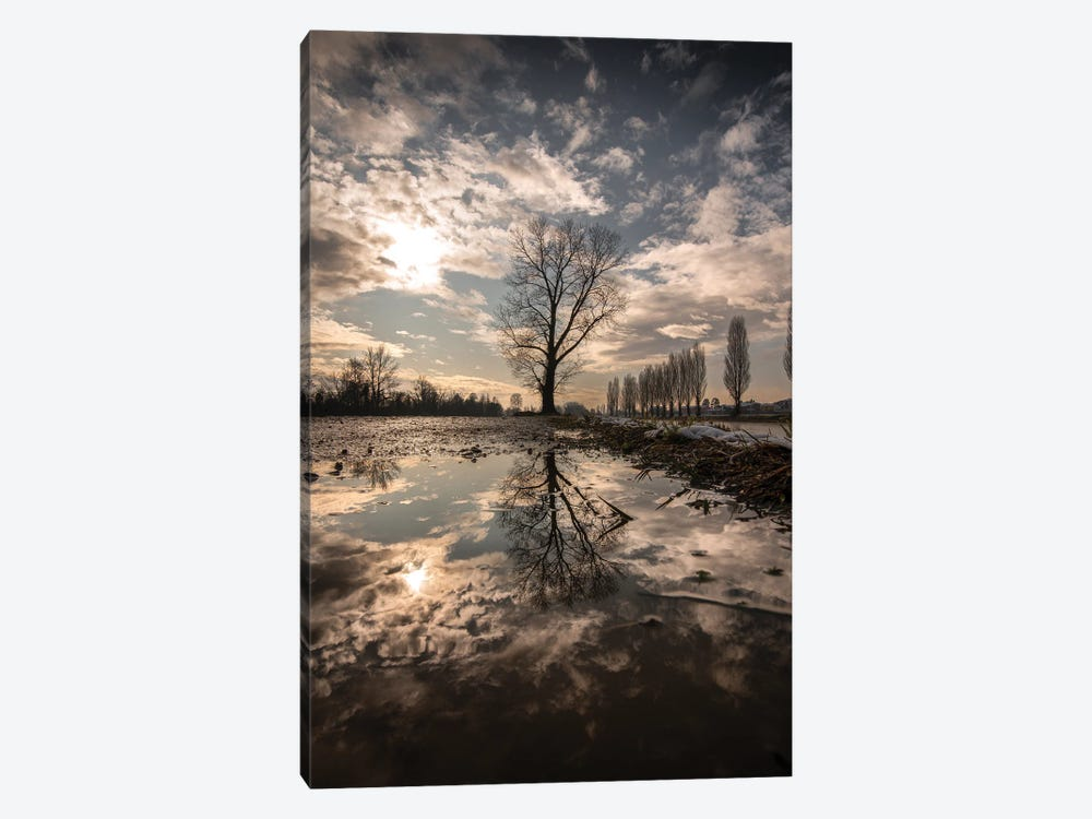 Reflections by Enzo Romano 1-piece Canvas Art Print