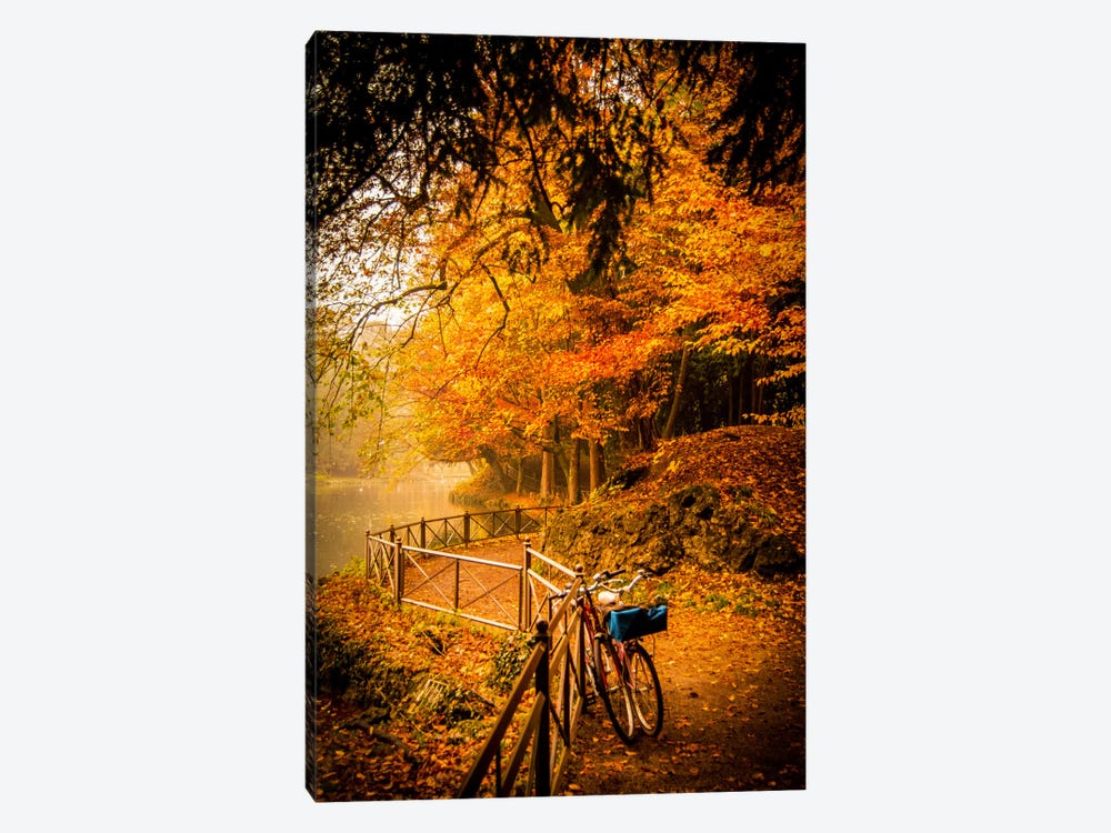 Parco di Monza (Monza Park), Northern Italy by Enzo Romano 1-piece Canvas Artwork