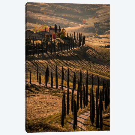 Val d'Orcia, Tuscany In Autumn Canvas Print #ENZ26} by Enzo Romano Canvas Print