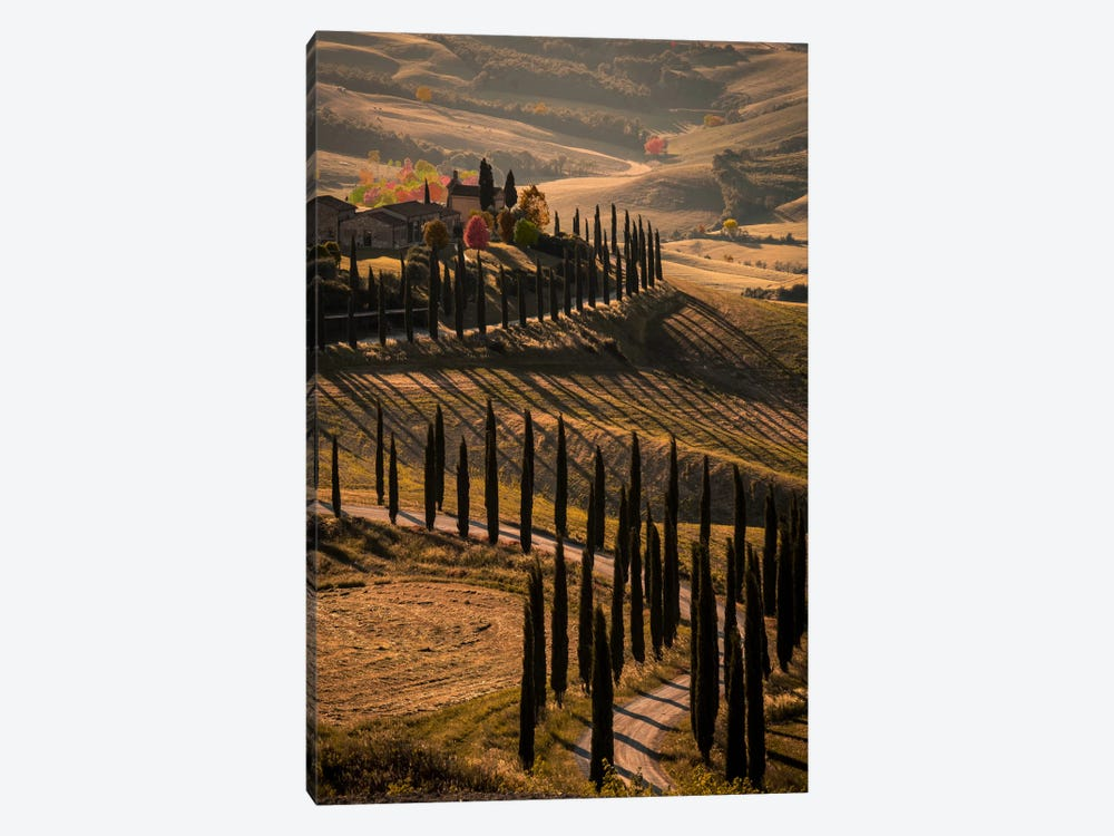 Val d'Orcia, Tuscany In Autumn by Enzo Romano 1-piece Canvas Wall Art