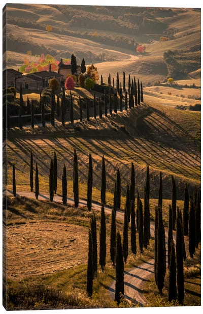 Val d'Orcia, Tuscany In Autumn Canvas Art Print