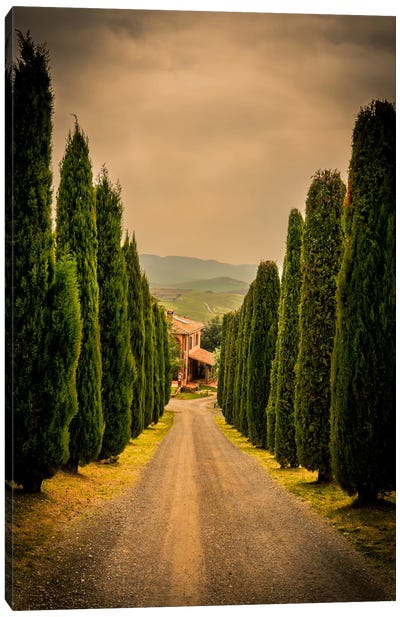 Val d'Orcia, Tuscany Canvas Art Print