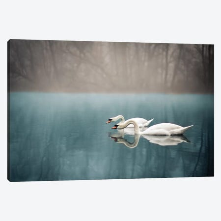 Swan's River Canvas Print #ENZ45} by Enzo Romano Art Print