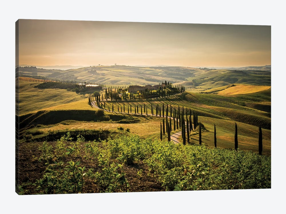 Toscana Asciano by Enzo Romano 1-piece Canvas Art Print