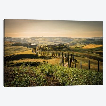 Toscana Asciano Canvas Print #ENZ47} by Enzo Romano Art Print