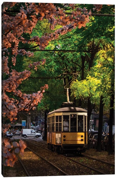 Milano Tram 33 Canvas Art Print