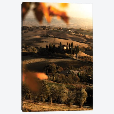 Val d'Orcia Canvas Print #ENZ87} by Enzo Romano Canvas Print