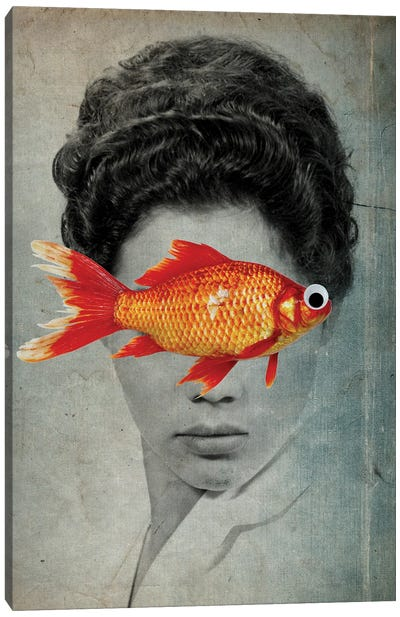 Fish Eye Canvas Art Print