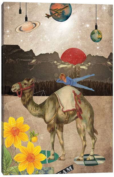 Desert Is A Lonely Place Canvas Art Print