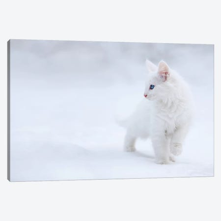 White As Snow Canvas Print #EPR1} by Esmée Prexus Canvas Artwork