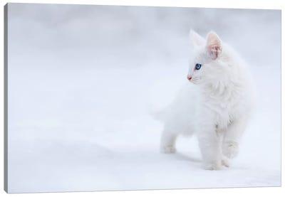 White As Snow Canvas Art Print