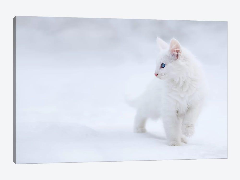 White As Snow by Esmée Prexus 1-piece Canvas Print