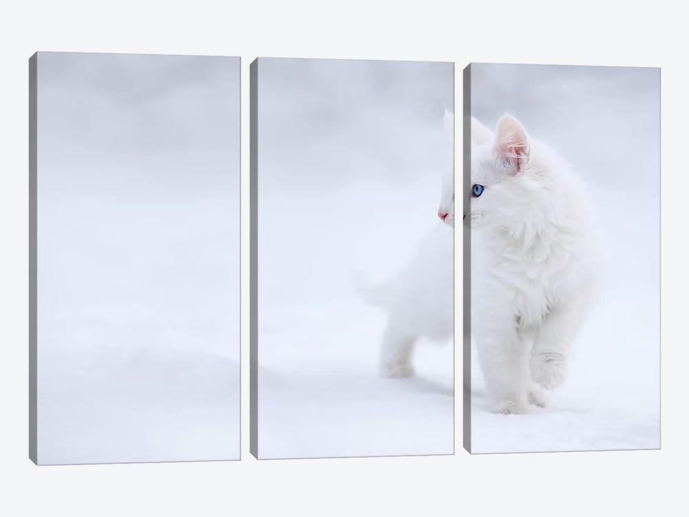 White As Snow by Esmée Prexus 3-piece Canvas Art Print