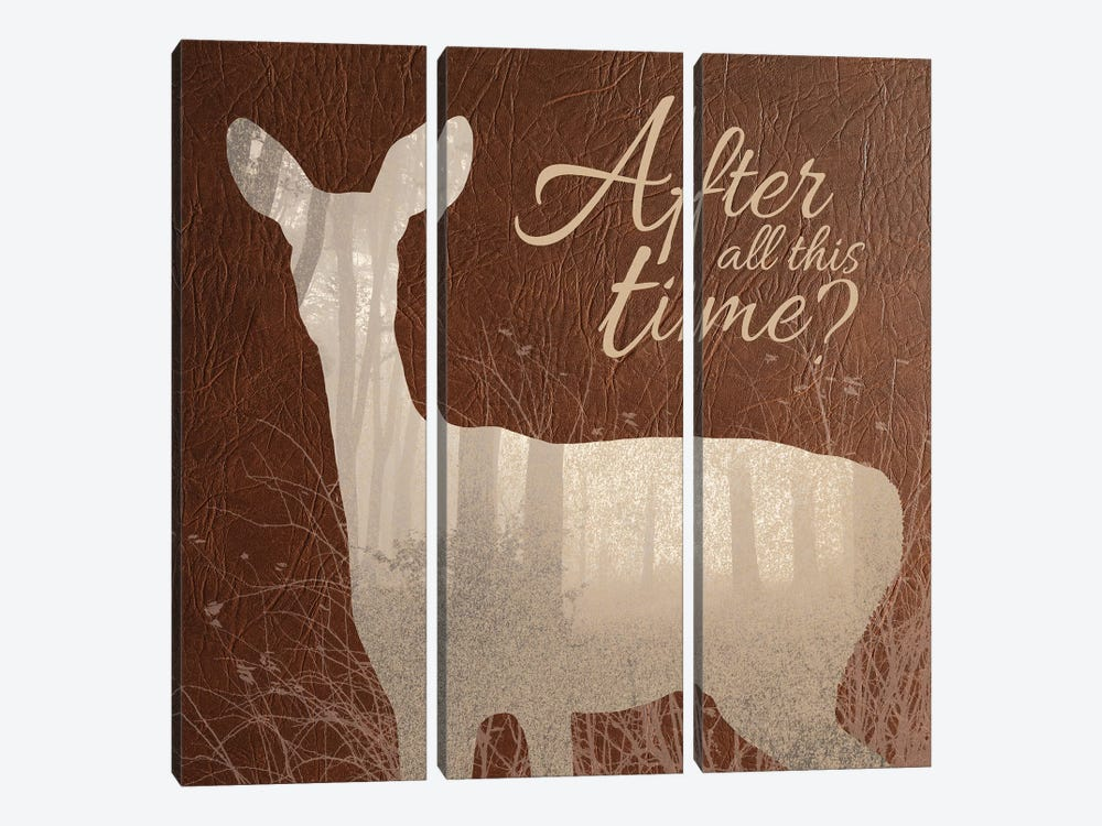After All This Time by 5by5collective 3-piece Canvas Art Print