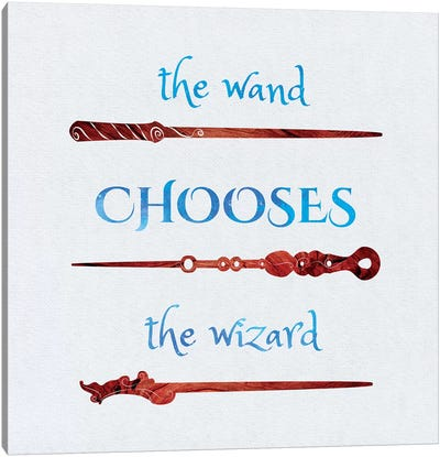 The Wand Chooses Canvas Art Print