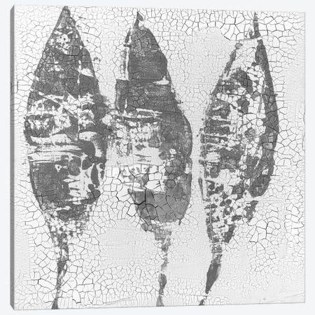 Minimalism VI Canvas Print #ERA10} by Elena Ray Art Print