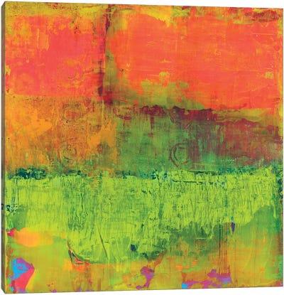 Hi-Fi Abstract IV Canvas Art Print