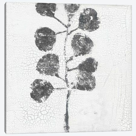 Minimalism I Canvas Print #ERA8} by Elena Ray Canvas Art