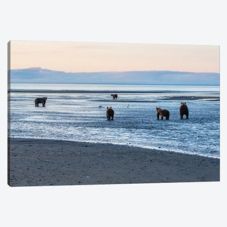 Bears Fishing Canvas Print #ERF15} by Eric Fisher Canvas Art Print