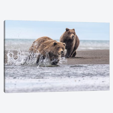 Running Bear Canvas Print #ERF56} by Eric Fisher Canvas Print