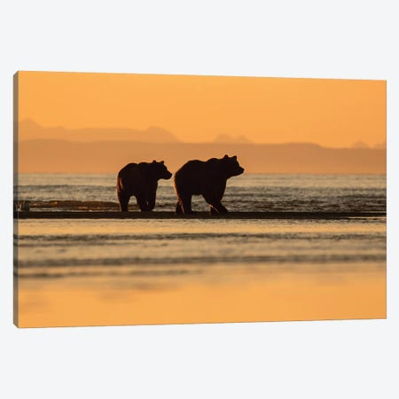 Two Bears On The Beach Canvas Print #ERF59} by Eric Fisher Canvas Art