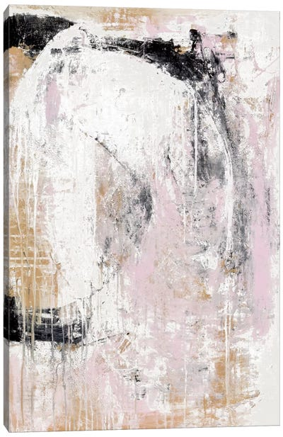 Washed Secrets Canvas Print #ERI10