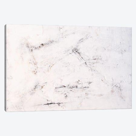 White Lies II Canvas Print #ERI245} by Erin Ashley Canvas Art Print