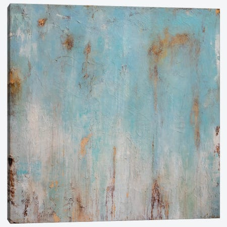 Morning Mist Canvas Print #ERI271} by Erin Ashley Canvas Print