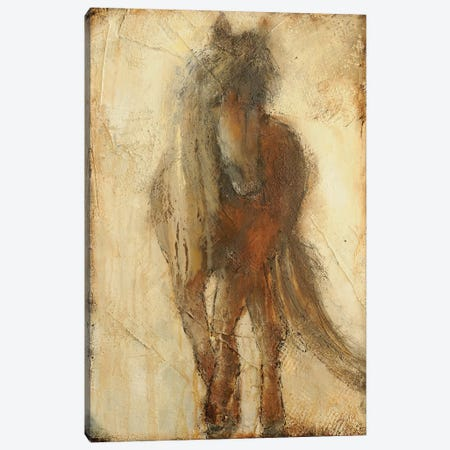 Mystical Beauty Canvas Print #ERI46} by Erin Ashley Art Print