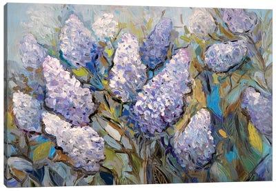 Lilacs Canvas Art Print