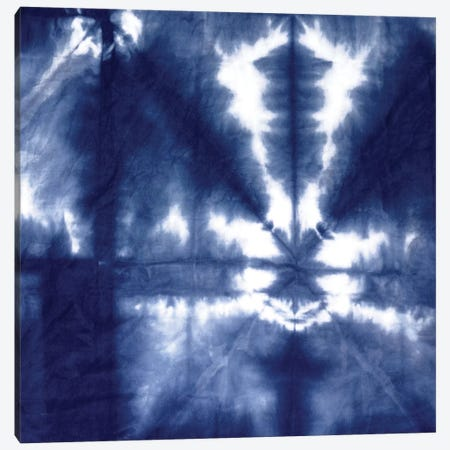 Shibori Dyed Decoration III Canvas Print #ERO122} by Ellie Roberts Canvas Art Print