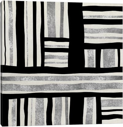 Silver Groove II Canvas Print #ERO69