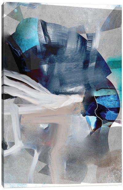 Perception Canvas Art Print