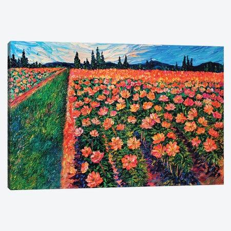 Adelman's Peonies Canvas Print #ERY1} by Eryn Tehan Art Print