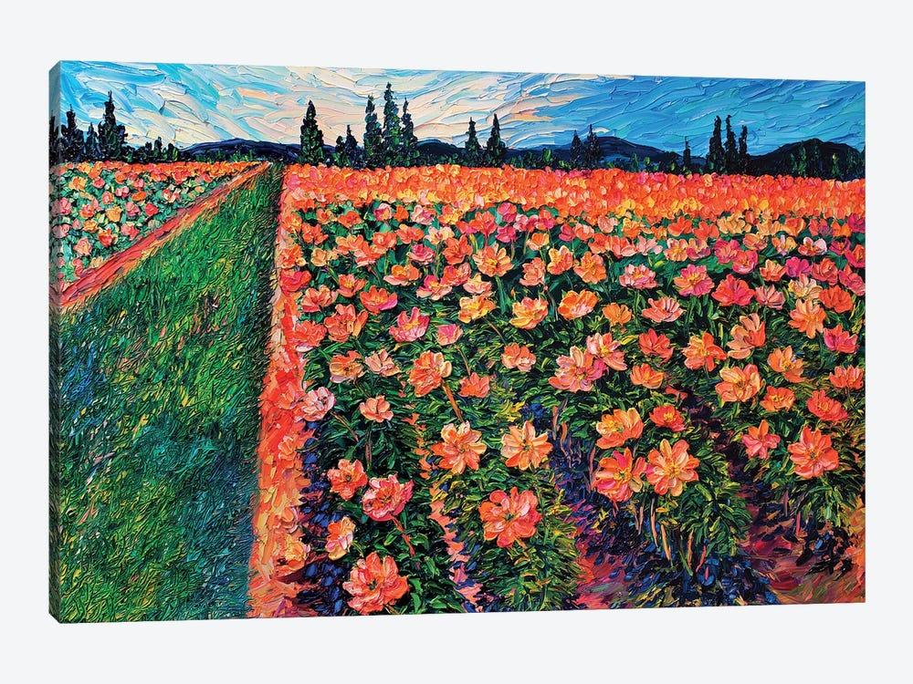 Adelman's Peonies by Eryn Tehan 1-piece Canvas Art Print