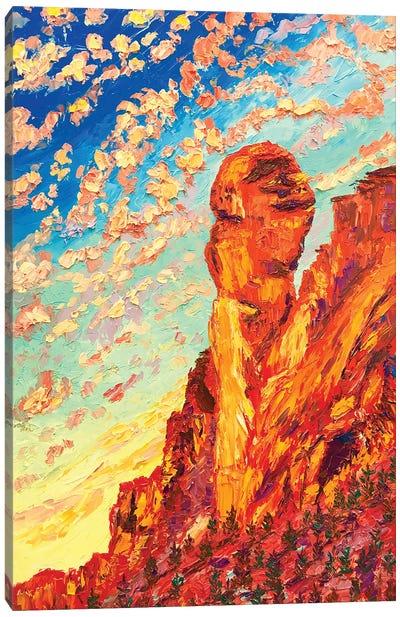 Monkey Face Rock Canvas Art Print