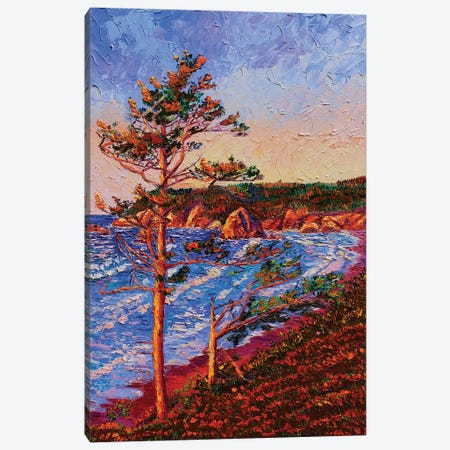 Overlooking Silverpoint Canvas Print #ERY29} by Eryn Tehan Canvas Wall Art