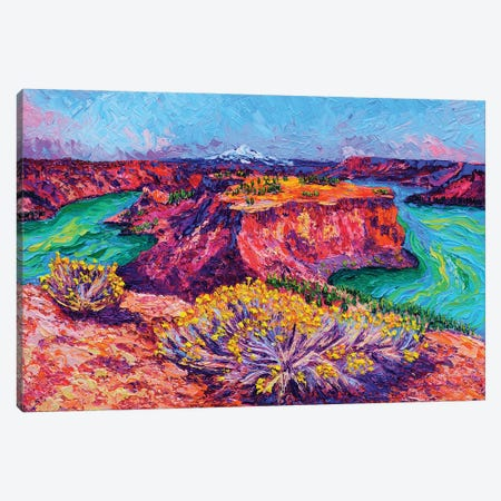 The Cove Palisades Canvas Print #ERY48} by Eryn Tehan Canvas Art