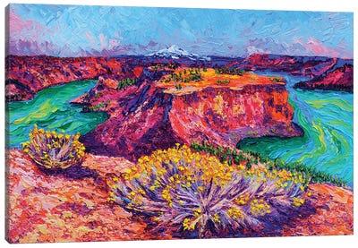 The Cove Palisades Canvas Art Print