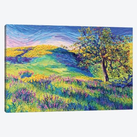 Wild Flower Hill Canvas Print #ERY58} by Eryn Tehan Canvas Art Print