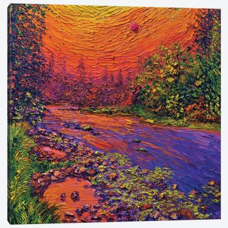 Wildfire Sky Canvas Print #ERY60} by Eryn Tehan Canvas Wall Art