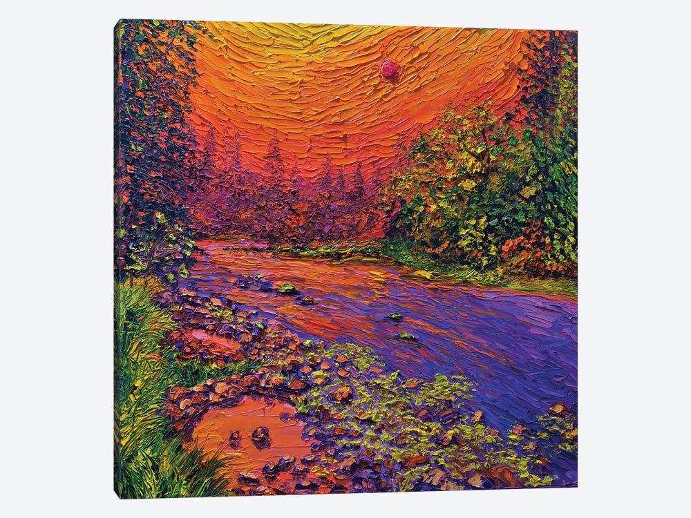 Wildfire Sky by Eryn Tehan 1-piece Canvas Print