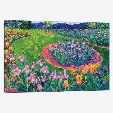Schriener's Irises Canvas Print #ERY69} by Eryn Tehan Canvas Art