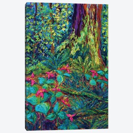 Dance Of The Trilliums Canvas Print #ERY6} by Eryn Tehan Canvas Artwork